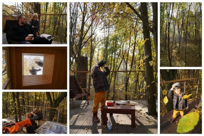 W Drzewach_wybrane8