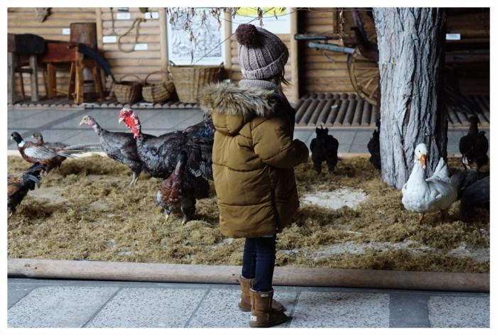 20180310 Szreniawa Muzeum Rolnictwa4a