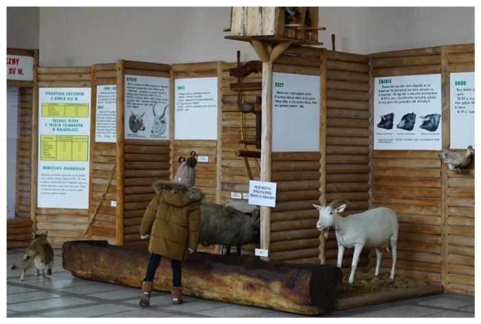 20180310 Szreniawa Muzeum Rolnictwa4b